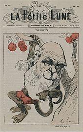 Caricature darwin 2 1