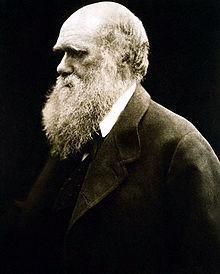 Portrait darwin 1